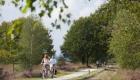 fietsers+Sallandse+Heuvelrug+3